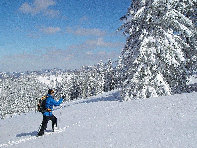 Skitouren Pillerseetal Apartment Steinplatte
